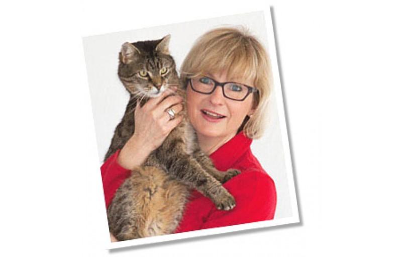 Kedi Terminolojisi 'Cins' Anlamı