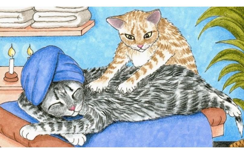 Neden Kedi Yoğurur?
