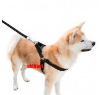 Büyük Irk Klipsli Köpek Göğüs Tasmasi No:2