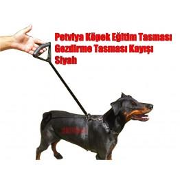 Petviya Köpek Eğitim Tasması - Gezdirme Tasması Kayışı - Siyah