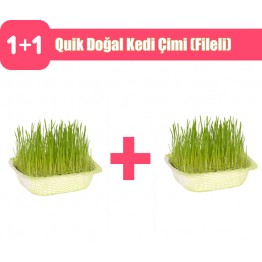 Quik Doğal Kedi Çimi (Fileli) 2 adet