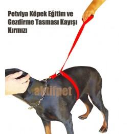 Petviya Köpek Eğitim Tasması - Gezdirme Tasması Kayışı - Kırmızı