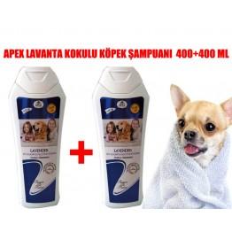 Apex  Köpekler için Lavanta Özlü Şampuan 400 Ml 2 adet
