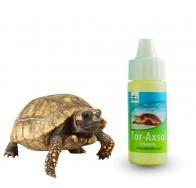 Apex Kaplumbağa Vitamini 20 ml