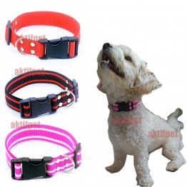 Petviya Ayarlanabilir Köpek Boyun Tasması 33-54 Cm 3 Renk
